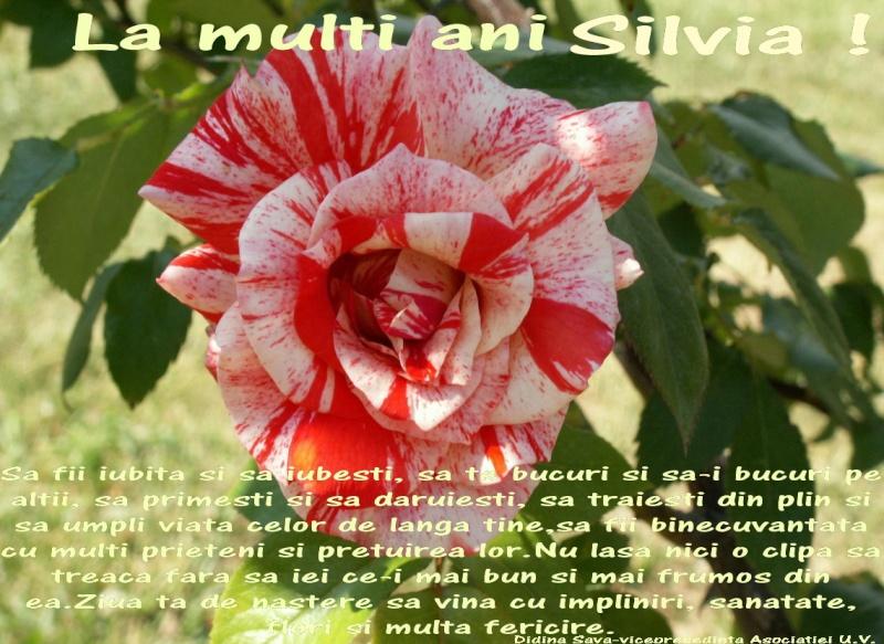 La Multi Ani ! - Pagina 2 Silvia10