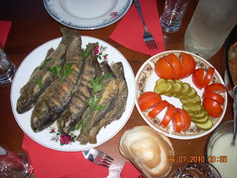 Tabara de creatie si recreatie Mahmudia-Natura-Istorie-Civilizatie-iulie 2010 Tabara74