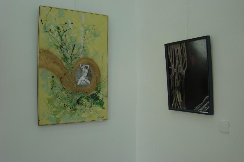 Vernisaj expozitie de pictura-Liliana Nastas Bratescu Vernis22