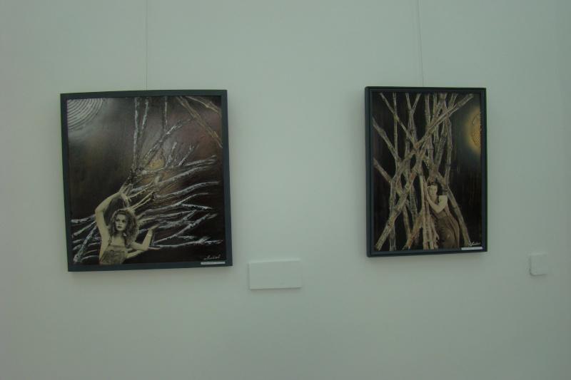 Vernisaj expozitie de pictura-Liliana Nastas Bratescu Vernis23