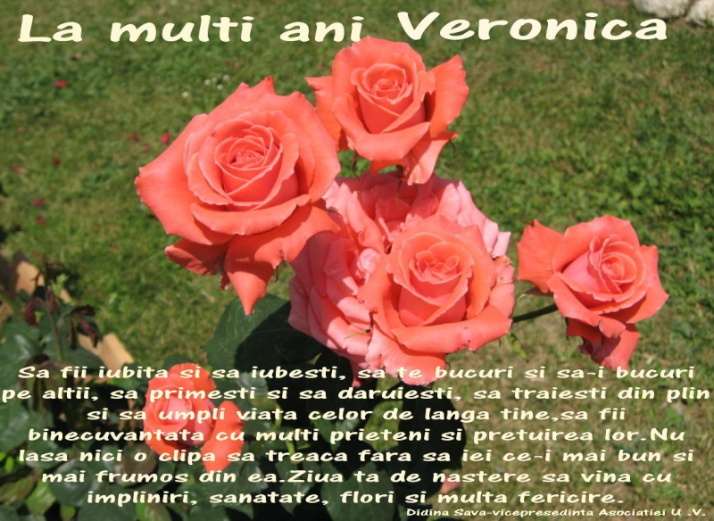 La Multi Ani ! - Pagina 2 Veroni10