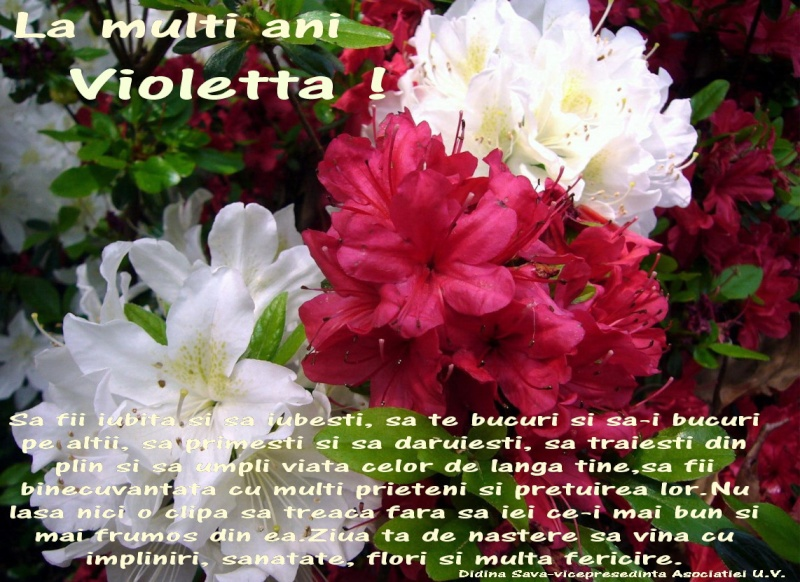 Poemele mele-Violetta Petre - Pagina 3 Violet10