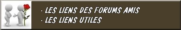 LES CONCOURS, ÉVÉNEMENTS, MANIFESTATIONS, LES VIDÉOS... FIBULIX DÉTECTION21 Fb01510