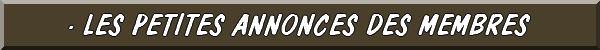 LES CONCOURS, ÉVÉNEMENTS, MANIFESTATIONS, LES VIDÉOS... FIBULIX DÉTECTION21 Fb02310