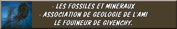 LES CONCOURS, ÉVÉNEMENTS, MANIFESTATIONS, LES VIDÉOS... FIBULIX DÉTECTION21 Fb02610