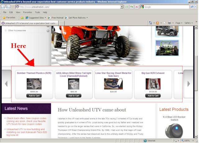New Web Site Specials!! Unleas10