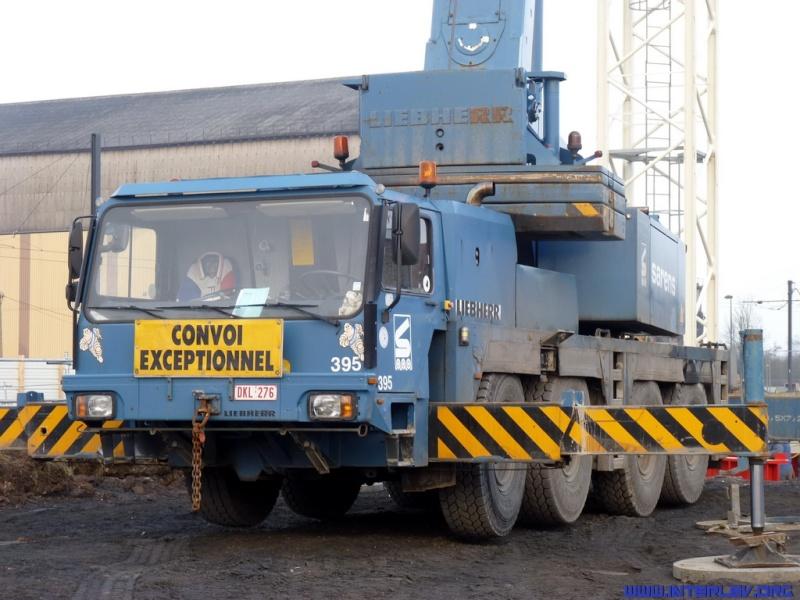Montage de grues à tour 2011-032