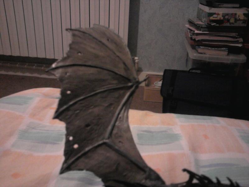 Ombre ailée Photo011