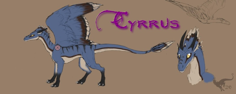 Cyrrus Cyrrus10