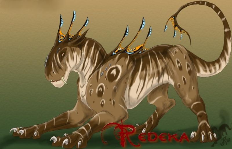 Redeka Redeka10