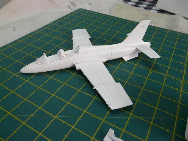 freece tricolori Aermacchi MB339A PAN 1-48 - Page 2 P1040920