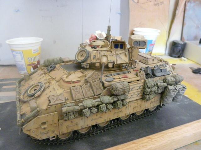 M2 Bradley Tamija 1-35  - Page 2 P1080410