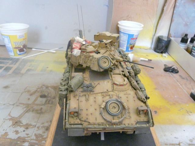 M2 Bradley Tamija 1-35  - Page 2 P1080511