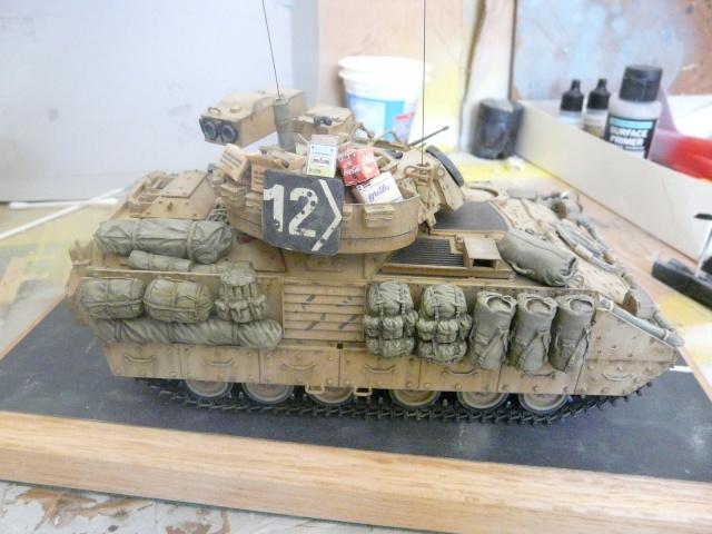 M2 Bradley Tamija 1-35  - Page 2 P1080512