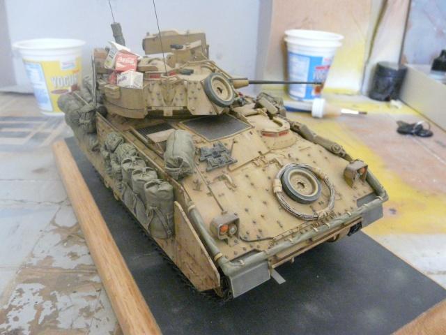M2 Bradley Tamija 1-35  - Page 2 P1080513