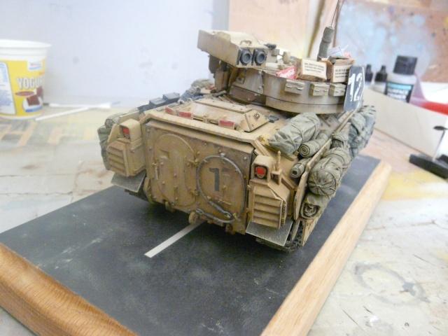 M2 Bradley Tamija 1-35  - Page 2 P1080514