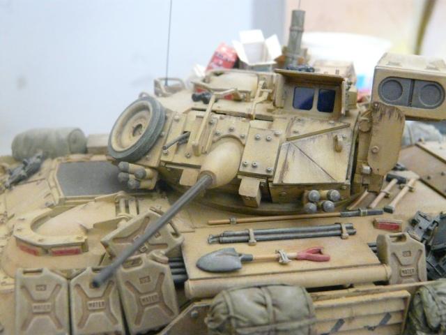 M2 Bradley Tamija 1-35  - Page 2 P1080516