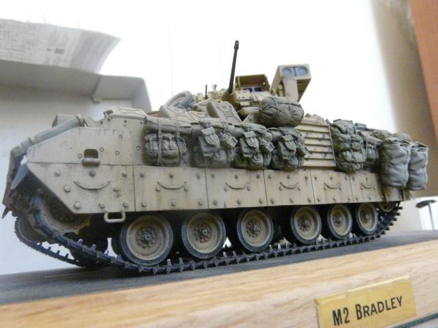 M2 Bradley Tamija 1-35  - Page 2 P1080517