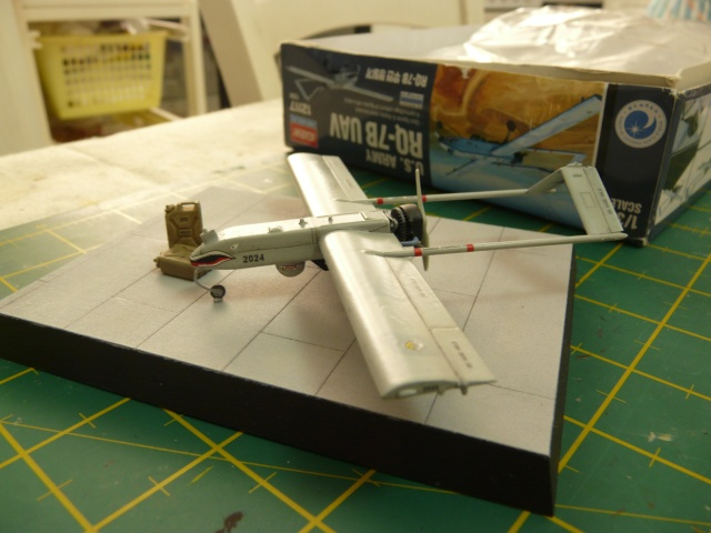 U.S Navy u.c.a.s X-47B    1-72 Platz - Page 2 P1080533