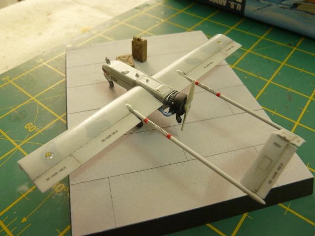 U.S Navy u.c.a.s X-47B    1-72 Platz - Page 2 P1080534