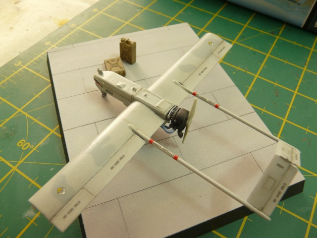 U.S Navy u.c.a.s X-47B    1-72 Platz - Page 2 P1080535