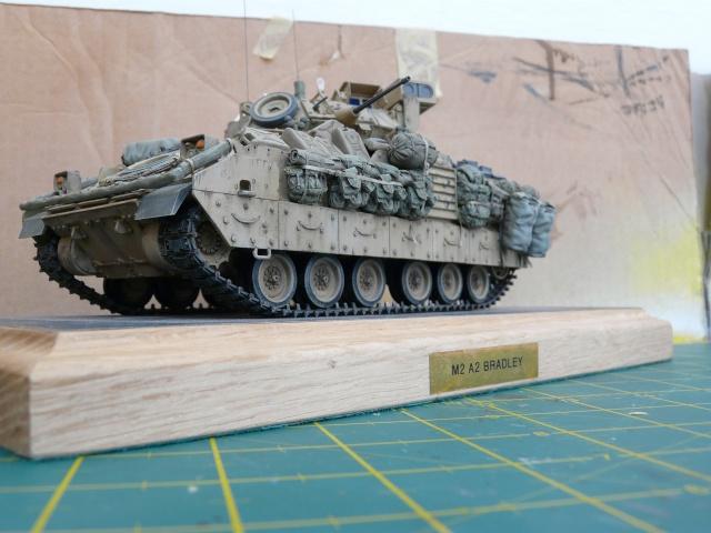 M2 Bradley Tamija 1-35  - Page 3 P1080610