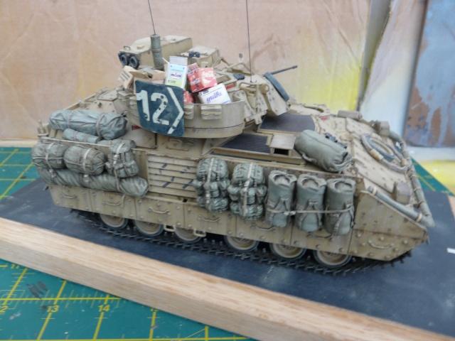M2 Bradley Tamija 1-35  - Page 3 P1080611