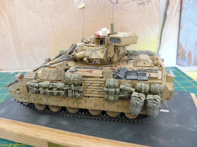 M2 Bradley Tamija 1-35  - Page 3 P1080612