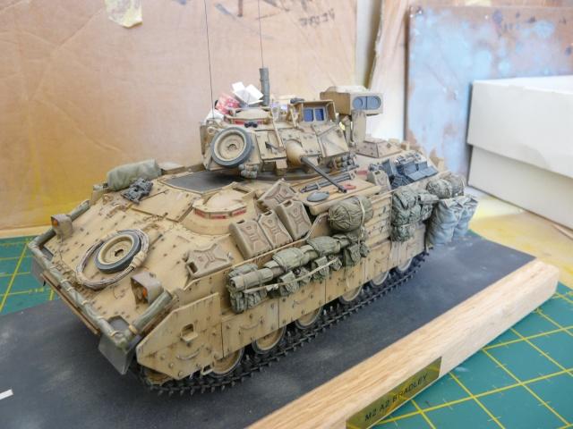 M2 Bradley Tamija 1-35  - Page 3 P1080613
