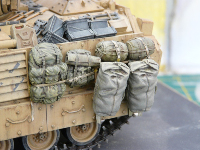 M2 Bradley Tamija 1-35  - Page 3 P1080615