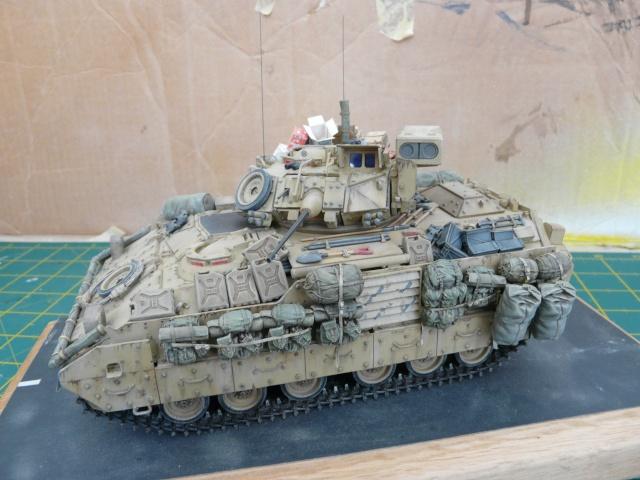 M2 Bradley Tamija 1-35  - Page 3 P1080616