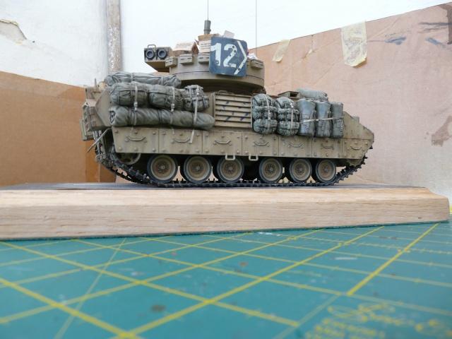 M2 Bradley Tamija 1-35  - Page 3 P1080617