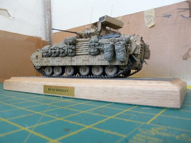 M2 Bradley Tamija 1-35  - Page 3 P1080618