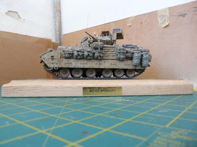 M2 Bradley Tamija 1-35  - Page 3 P1080619