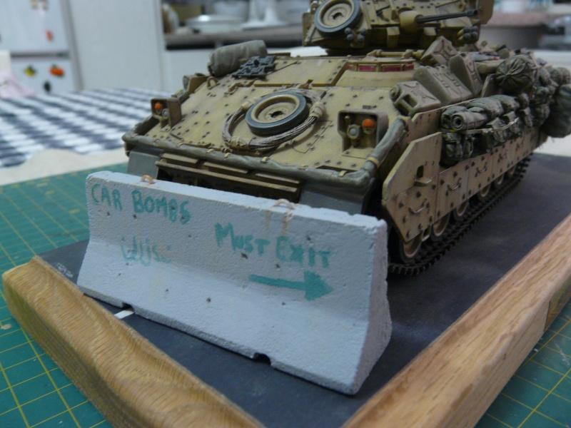 M2 Bradley Tamija 1-35  - Page 3 P1080711