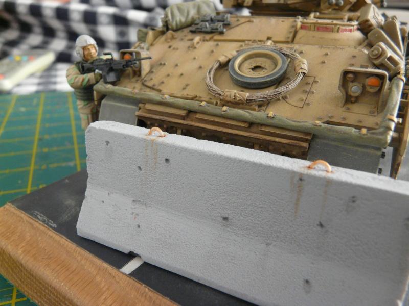 M2 Bradley Tamija 1-35  - Page 3 P1080714
