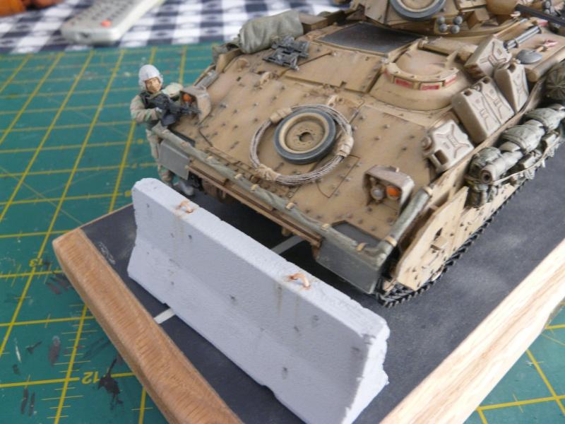 M2 Bradley Tamija 1-35  - Page 3 P1080715