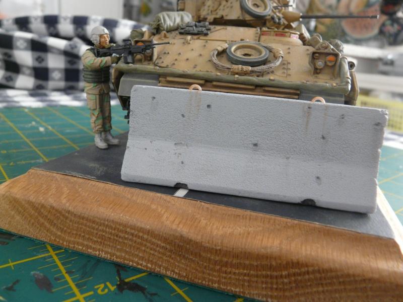 M2 Bradley Tamija 1-35  - Page 3 P1080716