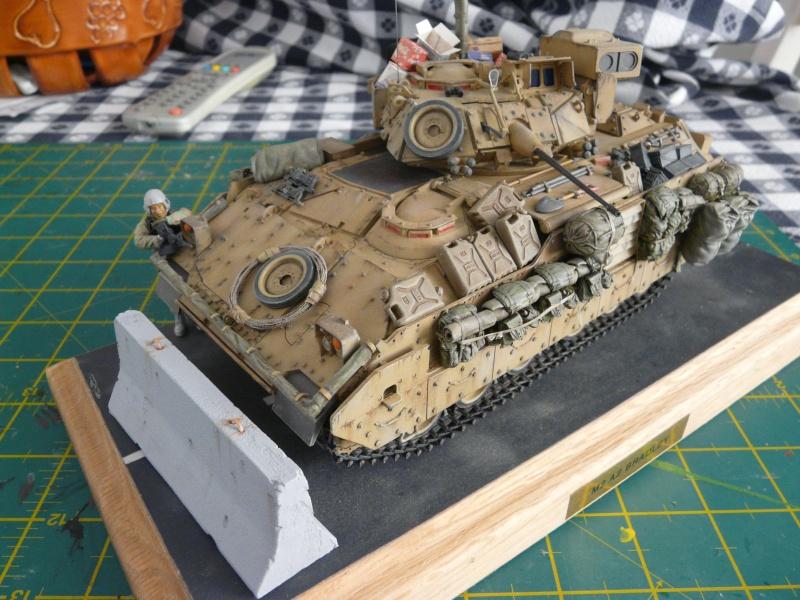 M2 Bradley Tamija 1-35  - Page 3 P1080717
