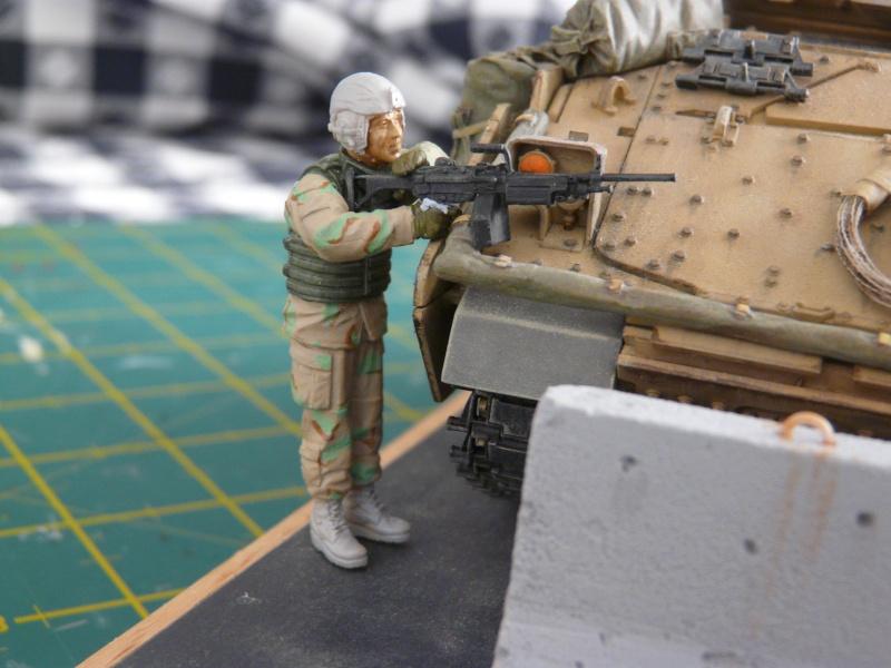 M2 Bradley Tamija 1-35  - Page 3 P1080718