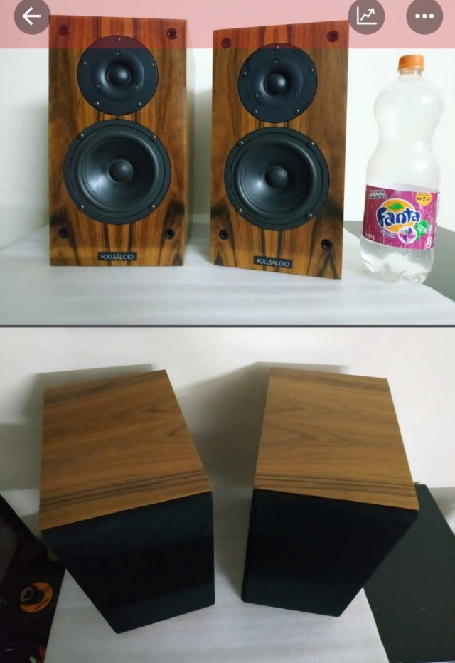 (not available) Focus Audio FC10 standmount speakers Img_2043