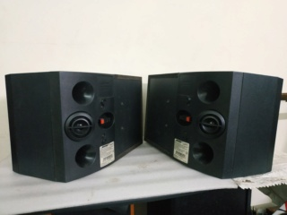 Bose 301 V standmount / wallmount speakers Img_2051
