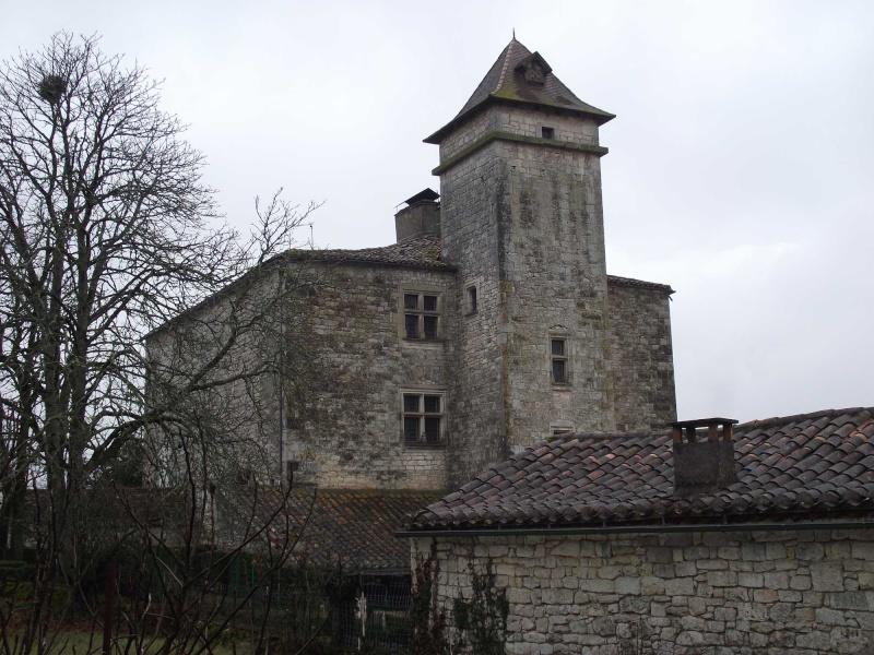 Sortie Galette des Rois, le 9 janvier 2011 Dscf0210