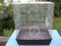 Cherche cage en 73 P6200012