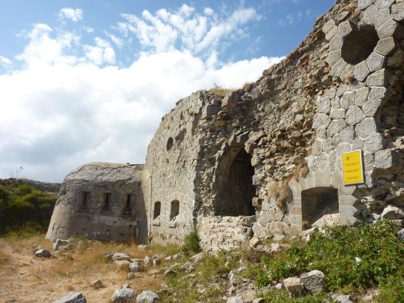 Fort des Mille-Fourches (massif de l'Authion) P1070210