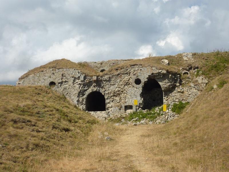 Fort des Mille-Fourches (massif de l'Authion) P1070211