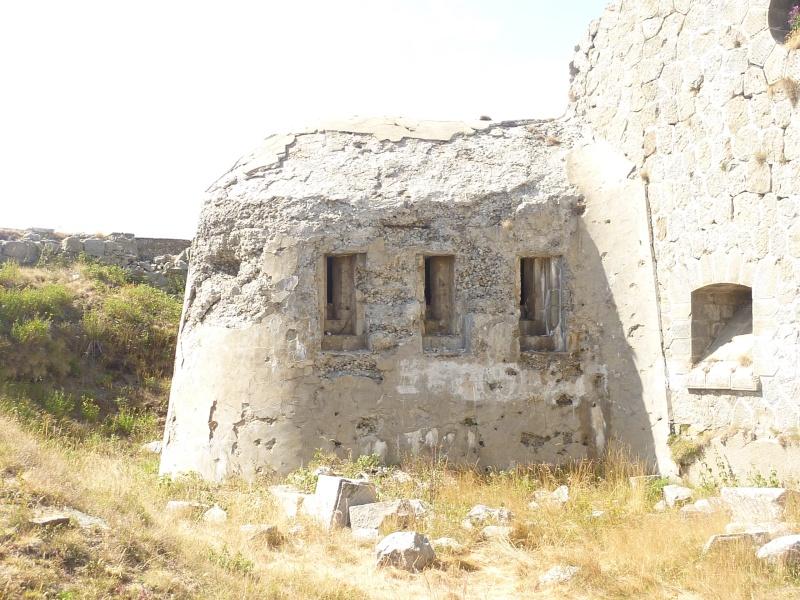 Fort des Mille-Fourches (massif de l'Authion) P1070212