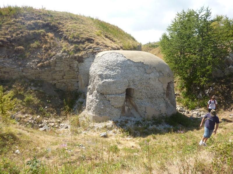 Fort des Mille-Fourches (massif de l'Authion) P1070213