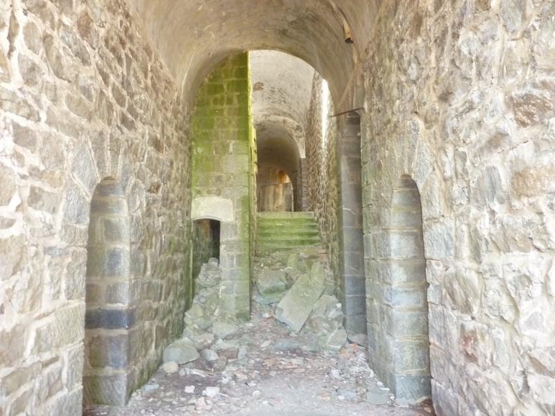 Fort des Mille-Fourches (massif de l'Authion) P1070214
