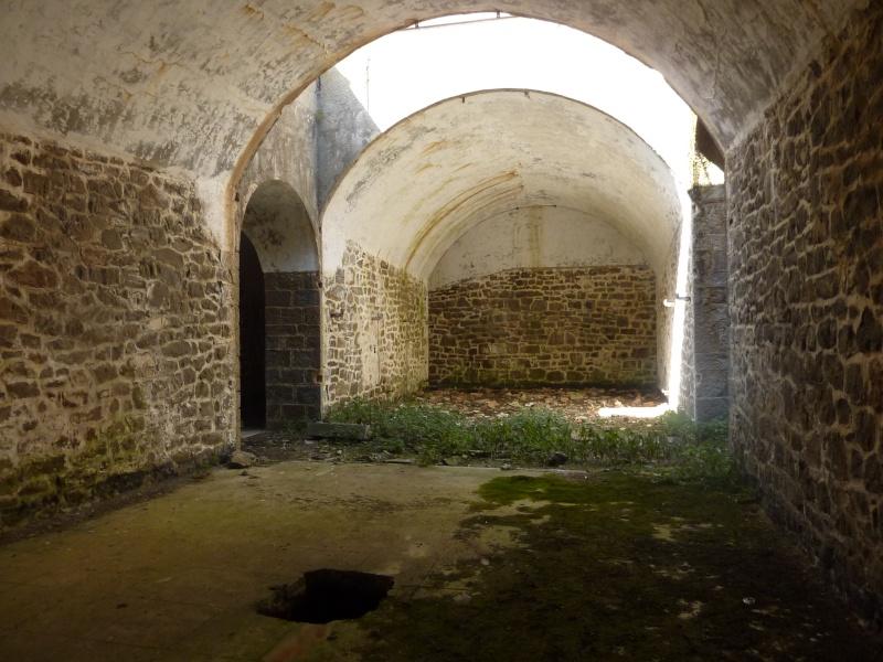 Fort des Mille-Fourches (massif de l'Authion) P1070215